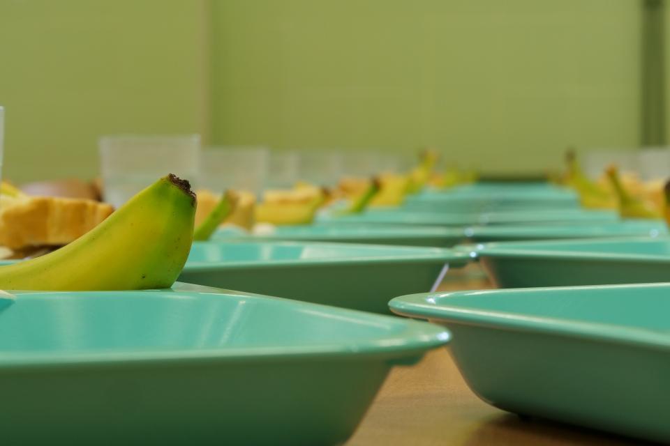 Empresa de catering para comedores escolares en Madrid   SECOE